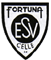 logofortuna1